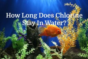 Chlorine Stay in water