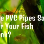 Are PVC Pipes Safe For Your Fish Tank?